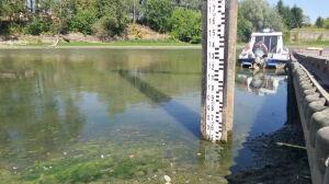 Wody w Wiśle coraz mniej. Na wodowskazie 47 cm