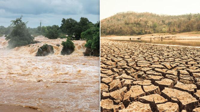 Tylko w pół roku ponad 10 milionów ludzi uciekło przed katastrofą klimatyczną