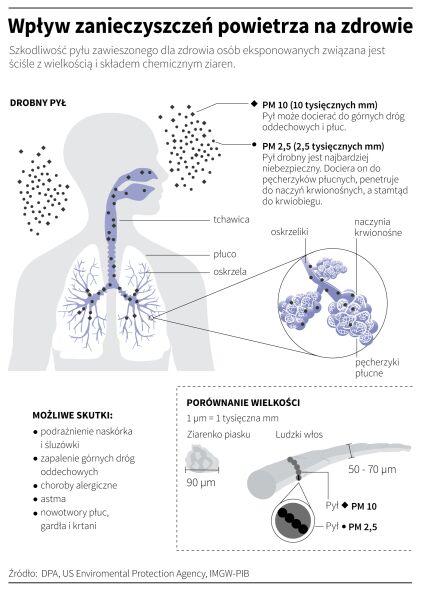 Wpływ zanieczyszczeń powietrza na zdrowie (Maria Samczuk , Adam Ziemienowicz/PAP)