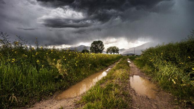 Intensywne opady deszczu. <br />Ostrzeżenia i prognoza zagrożeń IMGW